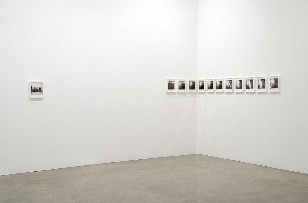 2010-tanya-bonakdar-installation_view8